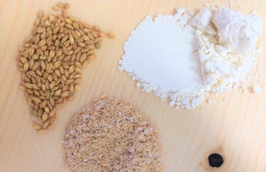 Découvrez le travail d'un moulin à farine dans des conditions optimales