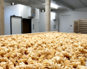 Formation à la production de pâtes à réception des vos équipements