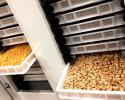 Comprendre le séchage des pâtes - Un art à part entière