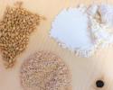 cereales-BIO-transformer-avec-moulin-meules-granit