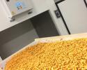 fabrication-des-pâtes-fraîches-a-la-ferme-pour-vente-directe