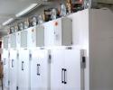 fabricant-installateur-ligne-production-pâtes